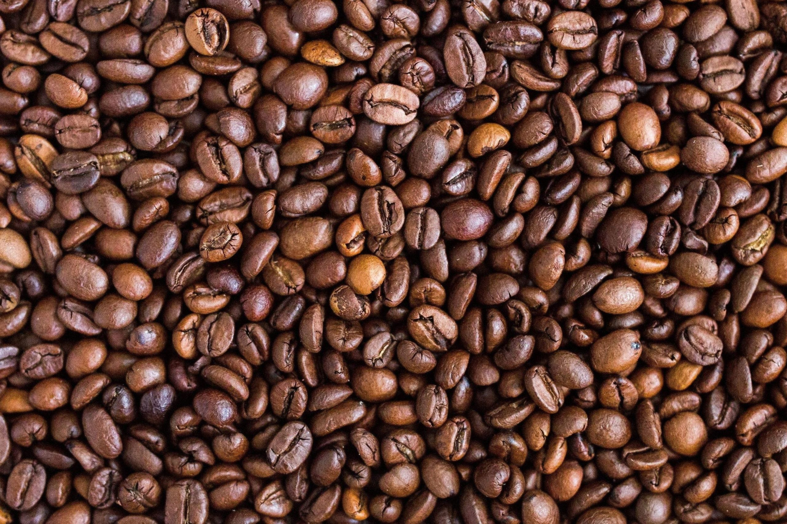 vente café en grain